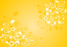 Elegant floral background Stock Photos