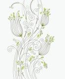 Elegant floral background Stock Image