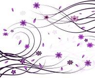 Elegant Floral Background Stock Photo
