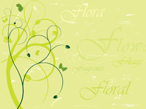 Elegant floral background. With separate layers.  More backgrounds in my portfolio Stock Image