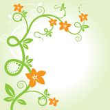Elegant floral background. Royalty Free Stock Image