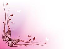 Elegant floral border vector illustration