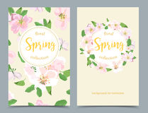 Elegant floral collection with isolated flowers, hand drawn Royalty Free Stock Photo