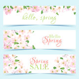 Elegant floral collection with isolated spring flowers Stock Photo