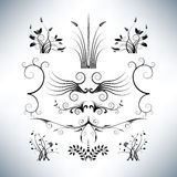 Elegant floral designs Stock Image