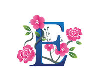 Elegant Floral E Alphabet Logo Illustration Royalty Free Stock Photography