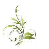 Elegant floral element Stock Photo