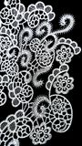 Elegant Floral Embroidery Stock Images
