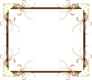 Elegant Floral frame isolated Royalty Free Stock Photography
