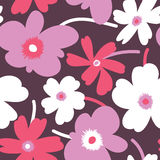 Elegant floral seamless pattern Stock Photos