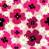 Elegant floral seamless pattern with poppies and daisies Royalty Free Stock Images