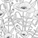 Elegant floral seamless pattern with poppy flowers. Elegant floral seamless pattern with beautiful poppy flowers leaves, buds and poppy heads. Black and white Royalty Free Stock Images