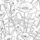 Elegant floral seamless pattern with poppy flowers. Elegant floral seamless pattern with beautiful poppy flowers leaves, buds and poppy heads. Black and white Stock Photo