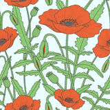 Elegant floral seamless pattern with poppy flowers. Elegant floral seamless pattern with beautiful poppy flowers leaves, buds and poppy heads. Colorful, red and Royalty Free Stock Photo