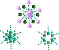 Elegant floral snowflakes. Hand drawn clematis flowers. Stock Photos