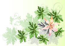 Elegant floral vector composition with space Stock Image