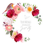 Elegant floral vector round frame with ranunculus, peony, rose,. Green plants and small robin bird on white. Burgundy red, peachy and white flowers. Crescent Royalty Free Stock Photo