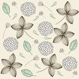 Elegant floral vintage background Stock Photos