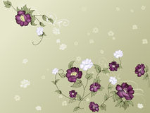 Elegant floral wallpaper Royalty Free Stock Images