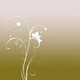 Elegant Foliage Background. An elegant design of foliage in a gradient background Stock Photos