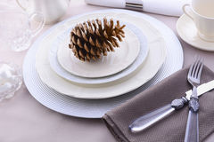 Elegant Formal Dining Thanksgiving Table Setting. Elegant Thanksgiving table place setting with fine china, crystal and antique cutlery in subdued colors with Stock Images
