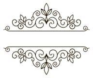 Elegant frame banner, floral elements. Vector illustration. Stock Photography
