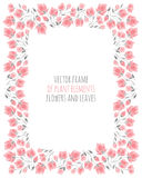 Elegant frame of delicate pink sakura cherry blossoms. Vector illustration for design Stock Photography