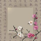 Elegant frame design with sakura blooming branch on a chinese calligraphic background. Stock Photos