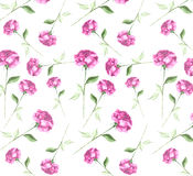 Elegant fresh   Watercolor  abstract rose flower art seamless wallpaper background. Long stem pink red roses elegant impressionist painting on a white Royalty Free Stock Photos