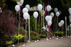 Elegant and fun decorated path to wedding aisle with white balloons and colorful ribbons royalty free stock images