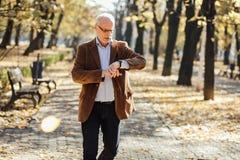 Elegant gå för gamala män Royaltyfri Fotografi
