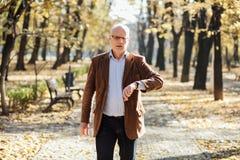 Elegant gå för gamala män Fotografering för Bildbyråer