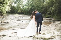 Elegant gentle stylish groom and bride near river with stones. Wedding couple in love stock images