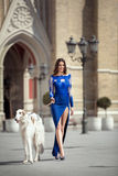 Elegant girl in blue evening dress standing outdoor with dog Royalty Free Stock Photos