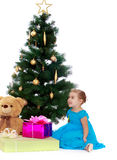 Elegant girl near the Christmas tree Royalty Free Stock Photography