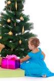 Elegant girl near the Christmas tree Royalty Free Stock Photos