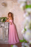 Elegant  girl in a pink long evening dress Royalty Free Stock Images
