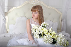 Elegant girl Stock Photos