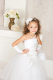 Elegant girl Stock Image