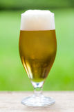 Elegant glass of cold refreshing beer Royalty Free Stock Images