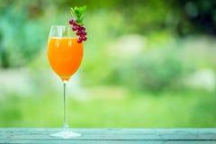 Elegant glass of fresh orange juice Royalty Free Stock Photo