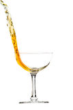 Elegant  glass with splash of drink Royalty Free Stock Photography