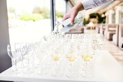 Elegant glasses with champagne standing in a row on serving tabl stock image