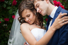 Elegant gorgeous happy bride and groom on the background of beau Stock Photo