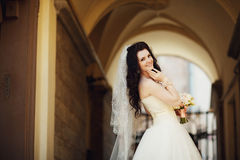 Elegant gorgeous happy bride standing on the background of a old building in Lviv Stock Photography