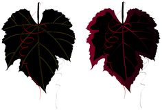 Elegant Grape Leaves. Stylized grape leaves. Red vine swirl accents. Would look classy on a private wine label, themed gift, or even as an avatar for all those vector illustration