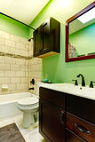Elegant green bathroom Stock Photography