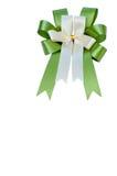 Elegant green ribbon Royalty Free Stock Photos