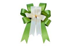 Elegant green ribbon Stock Image