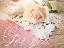 Elegant greeting card design with rose. Beautifull background with rose for congratulations and invitations. Wedding pattern Stock Photo